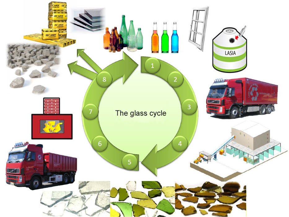 The Glass Cycle on Describe The Life Cycle Of A Plant